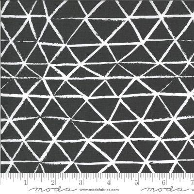 Charcoal (48303 18) - Zoology by Moda Fabrics