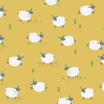 Dashwood - Farm Days - Sheep FARM1802