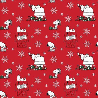 Craft Cotton Co - Snoopy's Christmas Fun - Do Not Open 2804-02